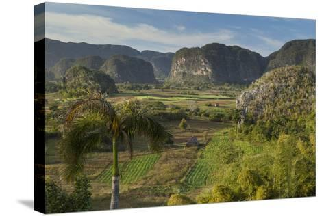 Cuba, Vinales. a View Looking over the Rich Farmland of the Valley-Brenda Tharp-Stretched Canvas Print