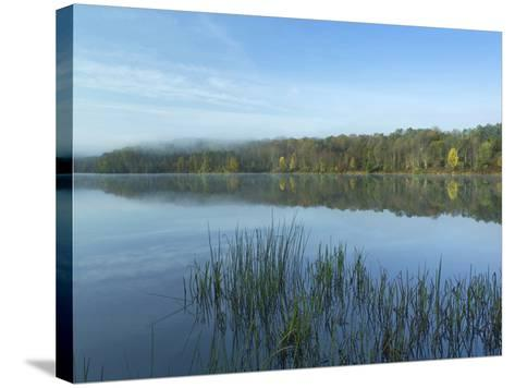 Lackawanna Lake at Bullhead Bay, Lackawanna State Park, Pennsylvania, Usa-Tim Fitzharris-Stretched Canvas Print