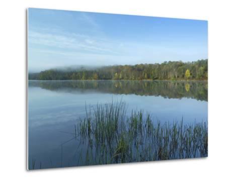 Lackawanna Lake at Bullhead Bay, Lackawanna State Park, Pennsylvania, Usa-Tim Fitzharris-Metal Print