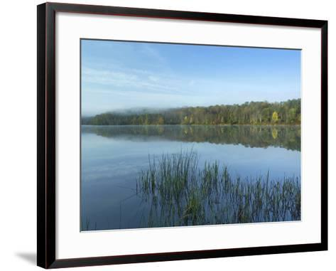 Lackawanna Lake at Bullhead Bay, Lackawanna State Park, Pennsylvania, Usa-Tim Fitzharris-Framed Art Print