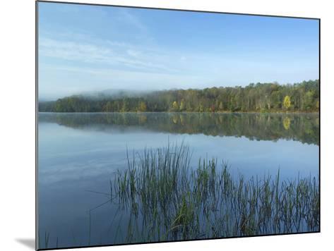 Lackawanna Lake at Bullhead Bay, Lackawanna State Park, Pennsylvania, Usa-Tim Fitzharris-Mounted Photographic Print