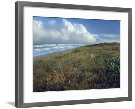 Storm Clouds at Apollo Beach, Canaveral National Seashore, Florida, Usa-Tim Fitzharris-Framed Art Print