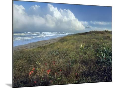Storm Clouds at Apollo Beach, Canaveral National Seashore, Florida, Usa-Tim Fitzharris-Mounted Photographic Print
