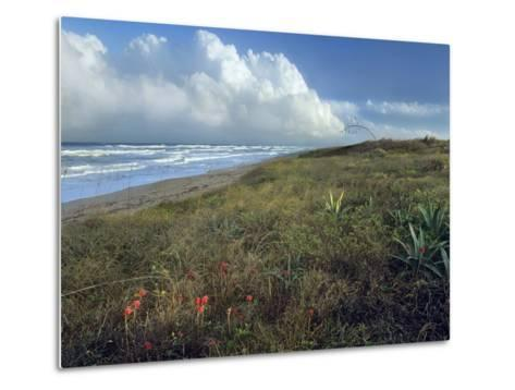 Storm Clouds at Apollo Beach, Canaveral National Seashore, Florida, Usa-Tim Fitzharris-Metal Print