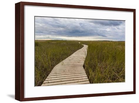 The Boardwalk Through the Tidal Marsh at Mass Audubon's Wellfleet Bay Wildlife Sanctuary-Jerry and Marcy Monkman-Framed Art Print