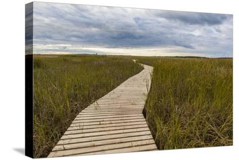 The Boardwalk Through the Tidal Marsh at Mass Audubon's Wellfleet Bay Wildlife Sanctuary-Jerry and Marcy Monkman-Stretched Canvas Print