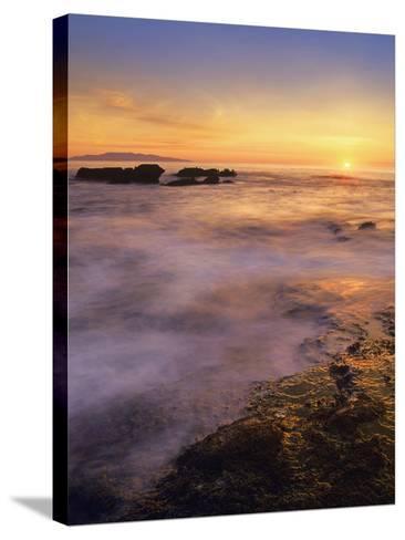 Botanical Beach, Vancouver Island, British Columbia, Canada-Tim Fitzharris-Stretched Canvas Print
