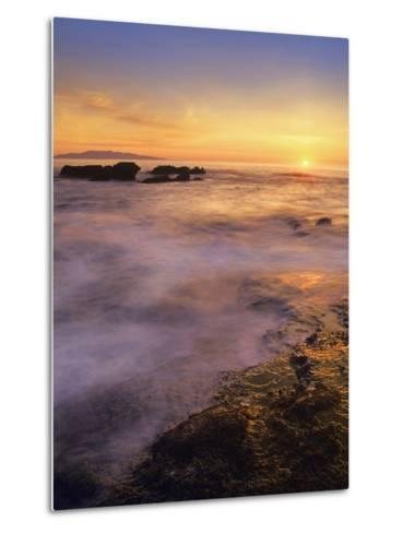 Botanical Beach, Vancouver Island, British Columbia, Canada-Tim Fitzharris-Metal Print