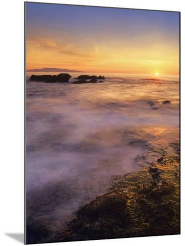 Botanical Beach, Vancouver Island, British Columbia, Canada-Tim Fitzharris-Mounted Photographic Print