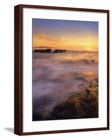 Botanical Beach, Vancouver Island, British Columbia, Canada-Tim Fitzharris-Framed Art Print