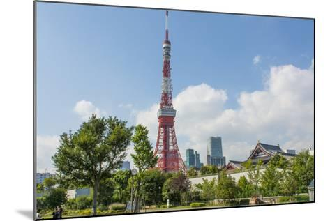 Tokyo, Japan. Tokyo Tower and the Zojo-Ji Temple in Shiba Neighborhood-Bill Bachmann-Mounted Photographic Print