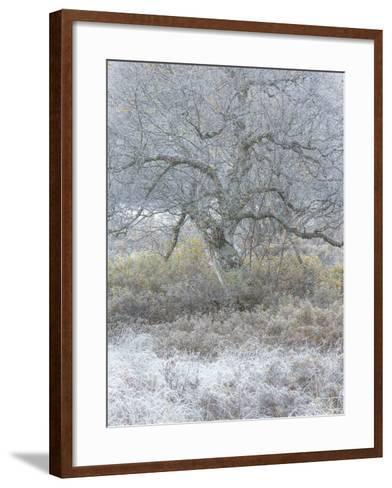 Another Winter-Doug Chinnery-Framed Art Print