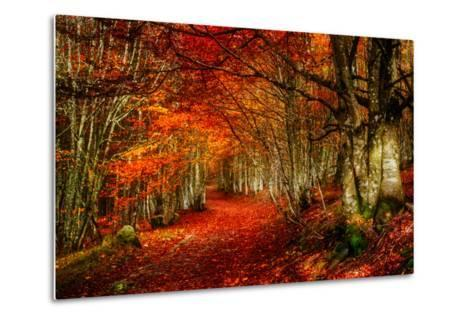 Reality and Dream-Philippe Sainte-Laudy-Metal Print