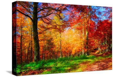 One Fine Day-Philippe Sainte-Laudy-Stretched Canvas Print
