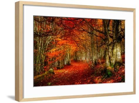 Reality and Dream-Philippe Sainte-Laudy-Framed Art Print