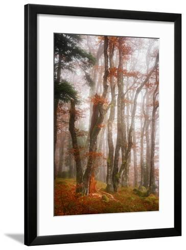 Let's Get Lost-Philippe Sainte-Laudy-Framed Art Print