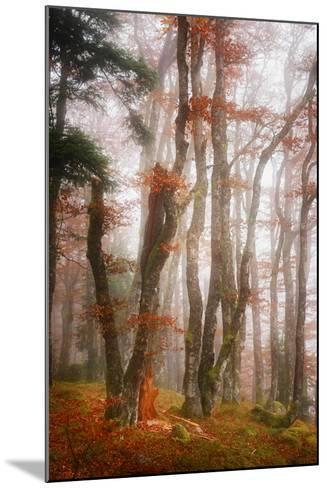 Let's Get Lost-Philippe Sainte-Laudy-Mounted Photographic Print