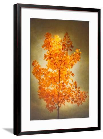 Textured Autumn-Philippe Sainte-Laudy-Framed Art Print