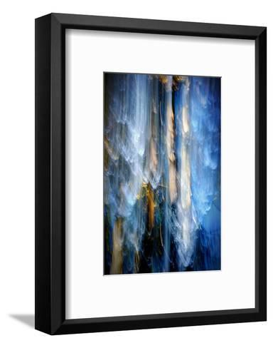 Evening Trees 1-Ursula Abresch-Framed Art Print
