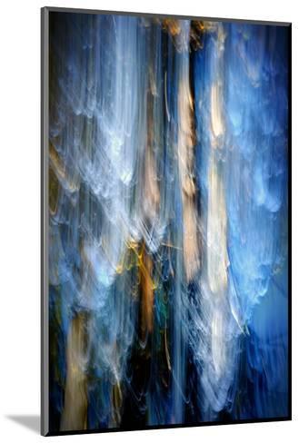Evening Trees 1-Ursula Abresch-Mounted Photographic Print