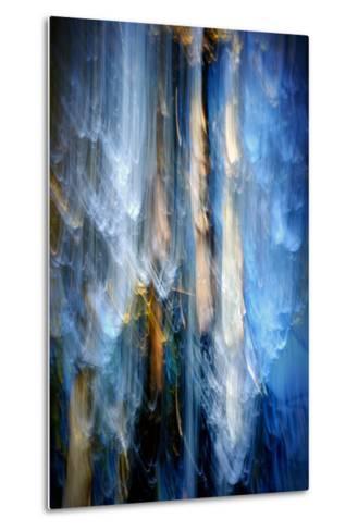 Evening Trees 1-Ursula Abresch-Metal Print