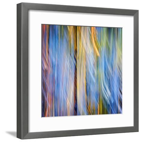 Pines-Ursula Abresch-Framed Art Print