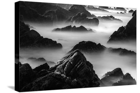 Point Lobos, California-Art Wolfe-Stretched Canvas Print
