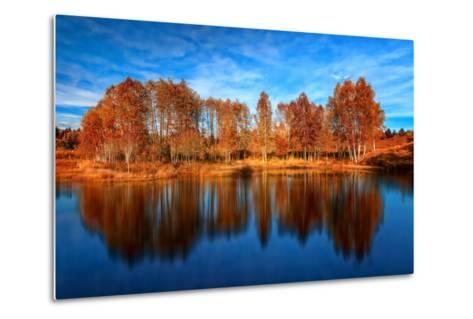 Back from the Edge-Philippe Sainte-Laudy-Metal Print