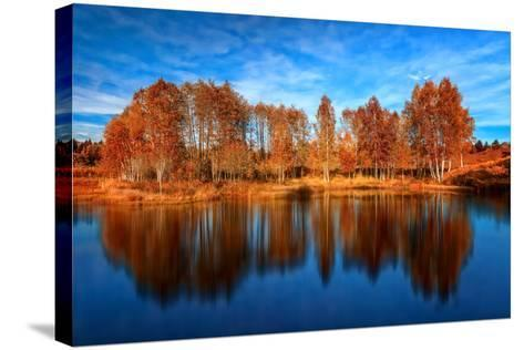 Back from the Edge-Philippe Sainte-Laudy-Stretched Canvas Print