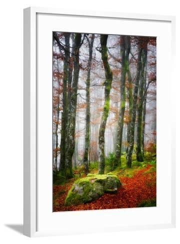 Forest Trail-Philippe Sainte-Laudy-Framed Art Print