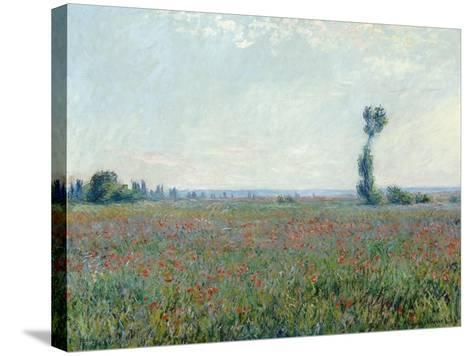 Poppy Field, 1881-Claude Monet-Stretched Canvas Print