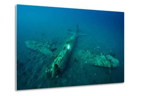 A World War Ii Japanese Zero Airplane Sunken Near the Willaumez Peninsula on New Britain Island-David Doubilet-Metal Print