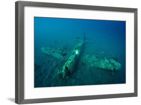 A World War Ii Japanese Zero Airplane Sunken Near the Willaumez Peninsula on New Britain Island-David Doubilet-Framed Art Print