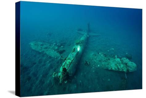 A World War Ii Japanese Zero Airplane Sunken Near the Willaumez Peninsula on New Britain Island-David Doubilet-Stretched Canvas Print