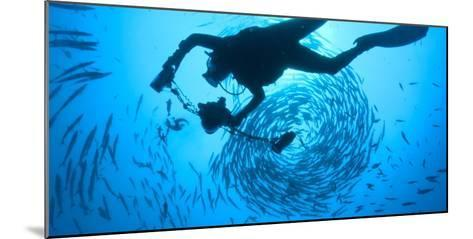 Photographer David Doubilet Swims in the Pacific Reef at Kimbe Bay-David Doubilet-Mounted Photographic Print
