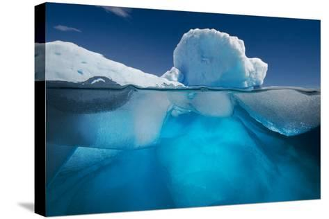 An Iceberg Off the Coast of the Antarctic Peninsula-David Doubilet-Stretched Canvas Print