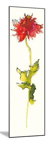 Peony Form Poppies III-Shirley Novak-Mounted Art Print