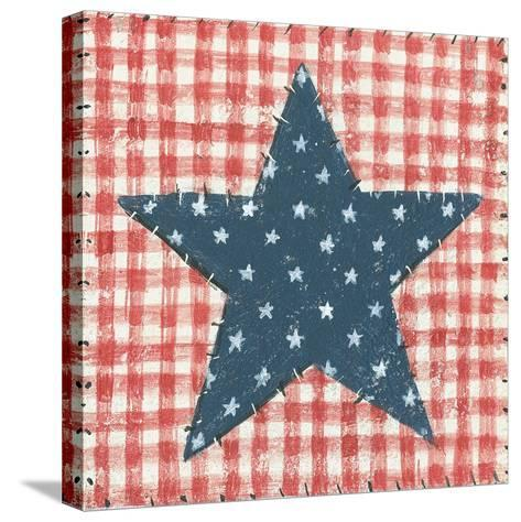 Americana Quilt II-David Carter Brown-Stretched Canvas Print