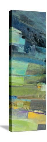 View of the Coast Panel I-Albena Hristova-Stretched Canvas Print