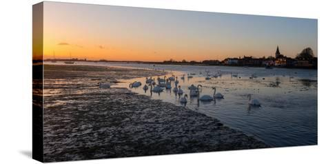 A View of Bosham Harbour in West Sussex-Chris Button-Stretched Canvas Print