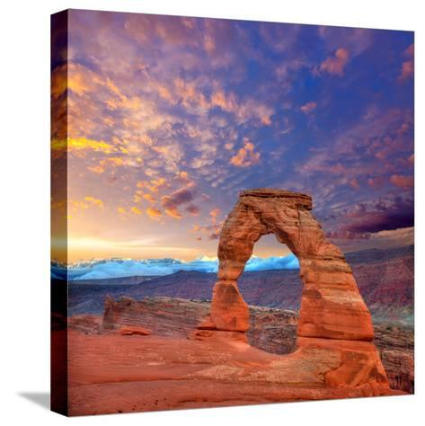 Arches National Park Delicate Arch in Utah Usa-Lunamarina-Stretched Canvas Print