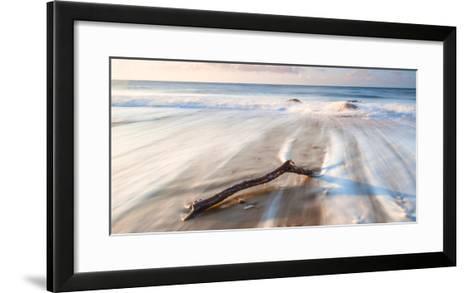 Branch on the Sea-Robert Maynard-Framed Art Print
