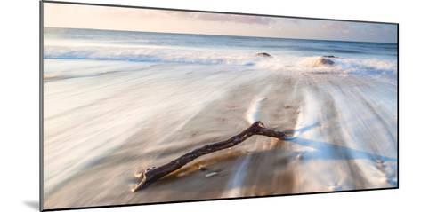 Branch on the Sea-Robert Maynard-Mounted Photographic Print