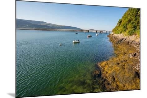A View across the Estuary to Barmouth Viaduct Barmouth Gwynedd Wales UK-David Holbrook-Mounted Photographic Print