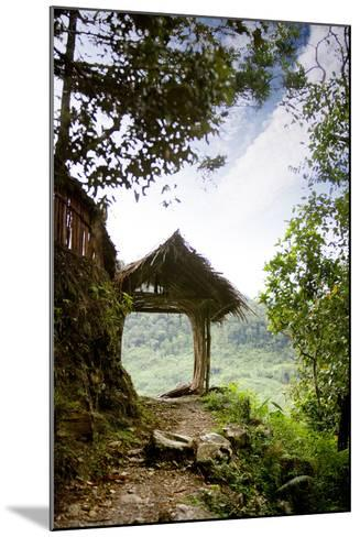 A Tranquil Garden Path in the Mountains-Tyler Olson-Mounted Photographic Print