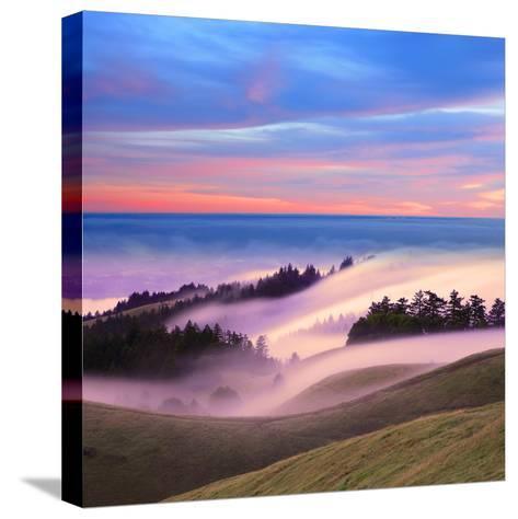 Beautiful Nature Scene, Mount Tamalpais, Marin County, California-Della Huff-Stretched Canvas Print