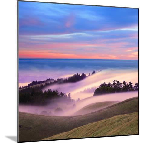 Beautiful Nature Scene, Mount Tamalpais, Marin County, California-Della Huff-Mounted Photographic Print