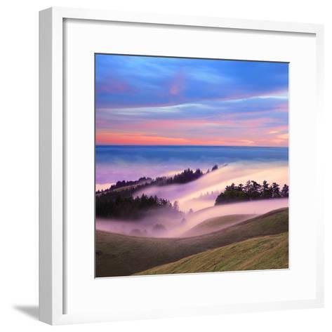 Beautiful Nature Scene, Mount Tamalpais, Marin County, California-Della Huff-Framed Art Print