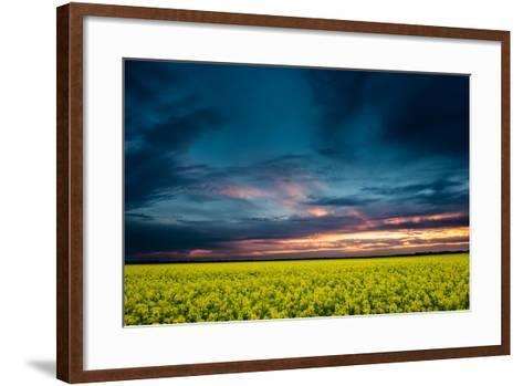 Beautiful Sunset in the Field-Oleg Saenco-Framed Art Print