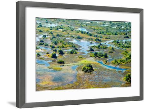 Aerial View of the Spring Floods of the Okavango Delta, Botswana,Africa-Dennis Sabo-Framed Art Print